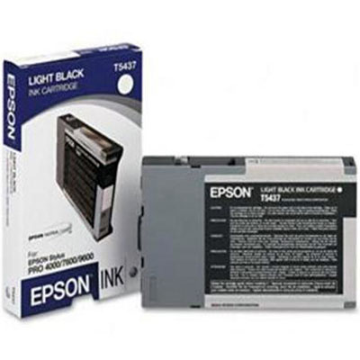 Genuine Epson C13T543700 Light Black Ink Cartridge (T5437LBKOEM)