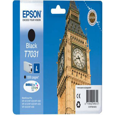Genuine Epson C13T70314010 Black Ink Cartridge (T7031BKOEM)